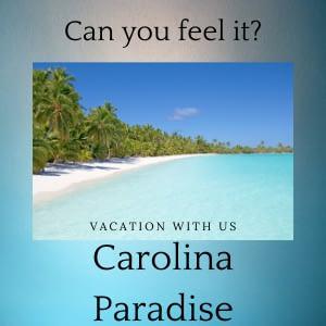 Vacations - MM Website Design