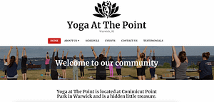 Client Website Image